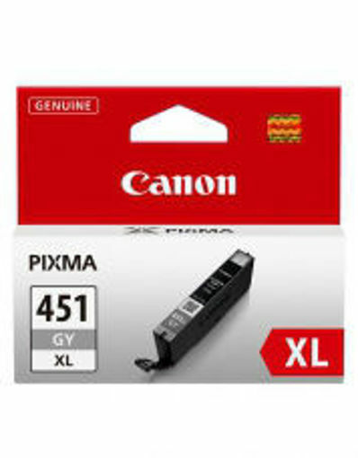Picture of CANON 451XL GREY
